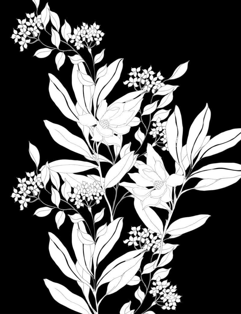 extrait de le jardin nocturne mandal anti stress livre coloriage adulte fleur nuit page 57